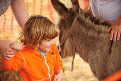 SUBMITTED PHOTO - Kids will find lots to do at the Parks & Recreation Department's Harvest Celebration at Luscher Farm, including an always-popular petting zoo.