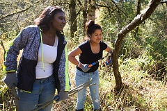 OUTLOOK PHOTO: JOSH KULLA - Springwater Trail High School students Christy Booker and Maria Santos trim trees along the Springwater Corridor Trail Wednesday as part of the school's student volunteer day.