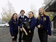 FILE PHOTO: RAY PITZ - Members of the Sherwood FFA chapter hold one of the pigs they took around to local businesses last year in order to raise money for the Oregon Food Bank.