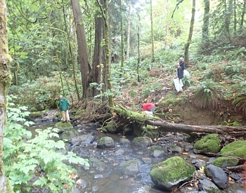 North Clackamas watersheds cleanup day set for Sept. 14