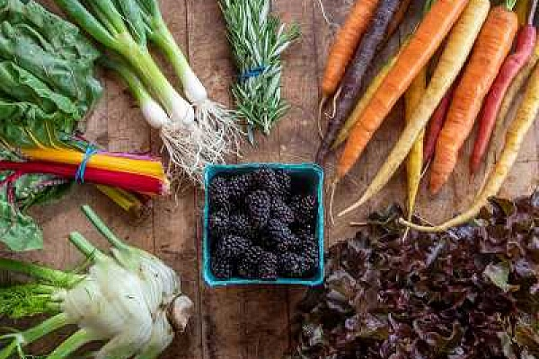 Blooming Junction farm offers vegetable pick-up boxes
