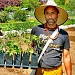 'Black Futures Farm' grows food, fosters community