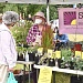 Farmers market opens outdoors with masked vendors, precautions