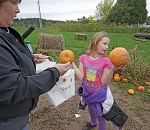 Washington County pumpkin patch farms adapting to COVID-19…