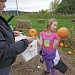 Washington County pumpkin patch farms adapting to COVID-19 rules