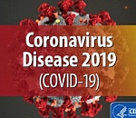 Reported new COVID-19 cases fall after record day