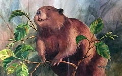 SUBMITTED PHOTO  - The Arts Council of Lake Oswego continues its Beaver Tales events and exhibition celebrating International Beaver Day. Dont miss the art and other special events planned.