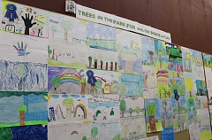 HOLLY M. GILL - Posters submitted for the city of Madras' contest for its Tree City USA celebration cover a wall in the City Council chambers in the Madras City Hall. The city is preparing to celebrate its 24th year as a Tree City USA Community on Friday, April 28, at 10 a.m., at Sahalee Park.