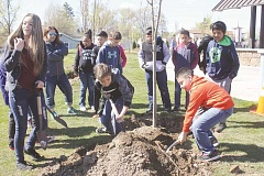 SUSAN MATHENY/MADRAS PIONEER - Students dig in to help plant seven of the 20 new trees going in at Sahalee Park.