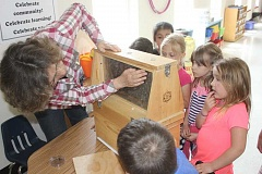 SUSAN MATHENY/MADRAS PIONEER - COARC research technician Heike Williams tries to find the queen bee in a glassed-in hive to show kindergarteners during a STEAM into Agriculture lesson on bees and pollination last Friday at Madras Elementary.