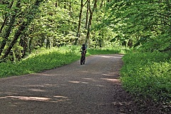 PORTLAND TRIBUNE: LYNDSEY HEWITT - Cycling in Northwest Portland's Forest Park has been a contentious issue for decades. The city's new Off-Road Cycling Master Plan has released concepts for new and expanded trails in the park, which some environmentalists say violates the park's management plan.