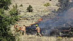 CENTRAL OREGONIAN FILE PHOTO - Grasses and other fuels at lower elevations are expected to dry out earlier than in the forests, making fires in such areas more likely during the late spring and early summer.