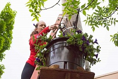 BRIAN GERATHS/PHOTOMEDIAPRODUCTIONS.COM - Kristine Boyer waits atop a ladder Saturday for her team to lift a flower basket into place. 'It gives you a different appreciation for the baskets once you have walked the streets and hung them up,' she says.