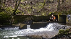COURTESY PHOTO - The fish ladder at Beaver Creek and Stark Street will be replaced.