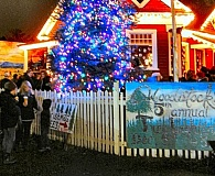 ELIZABETH USSHER GROFF - The Homestead Schoolhouse owners son, 8-year-old Sims Cronen, was elated to be the person chosen this year to plug in the lights for this seasons tree lighting ceremony on Woodstock Boulevard.