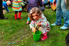 DAVID F. ASHTON - Focused on her task at this years SMILE Easter Egg Hunt in Westmoreland Park was Lillian Watts.