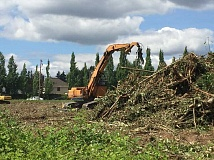 TIMES PHOTO: GEOFF PURSINGER - Crews have been working for a week to remove several hundred trees near 135th Avenue and Scholls Ferry Road. The site is expected to be the home of a large apartment building.