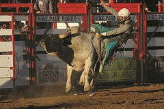 PHIL HAWKINS - The top-tier bulls at the St. Paul Rodeo's PBR competition on Thursday night kept most of the riders, including Trevor Easton, of South Dakota, from registering a final score.