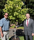HILLSBORO TRIBUNE PHOTO: CHASE ALLGOOD - Scott Eisenstein and Fred Johnson of the Hillsboro Community Foundation pose with a tree that started as a $1 donation from a young boy. The tree will be planted this fall.