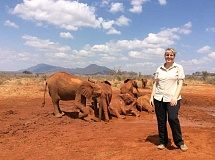 SUBMITTED PHOTO - Debbie Ethell, executive director of The KOTA Foundation, watches the wild elephants that she has been studying for years take a mud bath in Voi, Kenya. Ethell will be a featured speaker at a march Saturday in Portland..