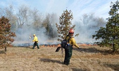 PMG PHOTO: BARBARA SHERMAN - A firefighter stands ready to tamp out a rogue section of fire in case it spreads in the wrong direction during a prescribed burn at the Tualatin River National Wildife Refuge on Sept. 29.