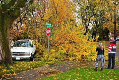 COURTESY OF MARC WALKER - A firefighter surveys the damaged pickup, under the fallen tree in Eastmoreland. Some powerlines were brought down in the incident as well.