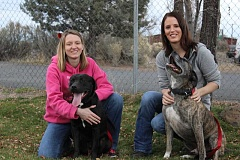 JASON CHANEY - HSO Shelter Manager Amanda Drake (left) and staff member Shawnee York pose with R.J. (left) and Kenny, who are both available for adoption.