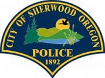 COURTESY OF SHERWOOD POLICE DEPARTMENT - Sherwood police, along with help from the Tigard, Tualatin and King City police departments, chased two boys throughout the city after they stole a car from a Sherwood resident. They were apprehended six hours later.