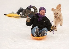 OUTLOOK PHOTO: JOSH KULLA - A woman and her dog enjoy sledding today at Main City Park after nearly a foot of snow fell on the region overnight.