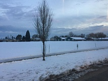 COURTESY OF WASHINGTON COUNTY - The Washington County Fairgrounds in Hillsboro remain covered in snow and ice Tuesday morning.
