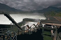 FILE PHOTO - A lamprey ladder at Bonneville Dam snakes its way over the powerhouse.