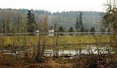 TIDINGS PHOTO: VERN UYETAKE - The City is optimistic about potential uses for the old paper mill pond property on West Linn's side of the river, but it will have to coordinate with Clackamas County Water Environment Services on any redevelopment efforts.