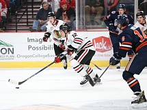 COURTESY: BRYAN HEIM/PORTLAND WINTERHAWKS - Illijah Colina of the Portland Winterhawks carries the puck up the ice against the Kamloops Blazers at  Moda Center on Wednesday.