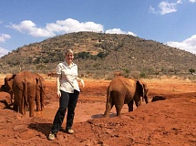 SUBMITTED PHOTO  - Portland area resident Debbie Ethell, the executive director of KOTA Foundation, will address members of the Lake Oswego Adult Community Center Feb. 13. She is working to keep elephants from extinction.