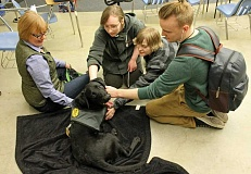 REVIEW PHOTO: JILLIAN DALEY - PACTT program coordinator Kathy Loter watches over Ledger the black Lab while Lakeridge students worship his cuteness. Students are, from left: Margaret Zackery, Riley Opoka and Josh Newman.