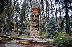 HILLSBORO TRIBUNE PHOTO: GEOFF PURSINGER - The iconic Chief Kno-Tah statue on TV Highway may need to be removed later this year after a large tree fell on the statue earlier this month. The statue celebrates its 30th anniversary this year.