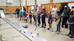 CONTRIBUTED  - It was action-packed fun as the Scouts watched their cars race in the pinewood derby. I